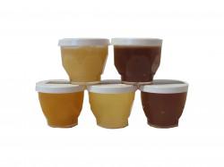 Alvéolettes miel 30 g